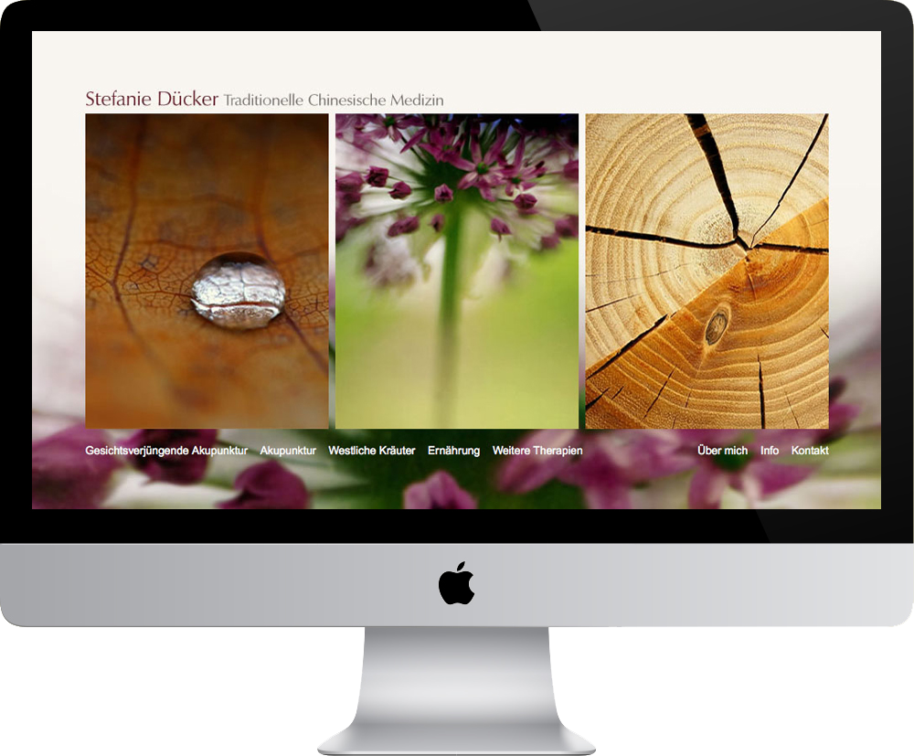 duecker_web